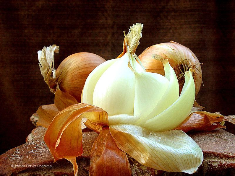 Meditation, therapy, forgiveness and the smell of onions