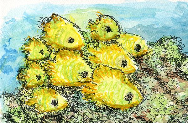 School of Bluecheek Butterfly Fish
