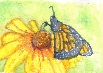 black-eyed susan & monarch butterfly #10