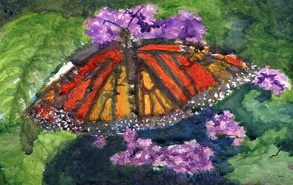Monarch Butterfly on lilacs